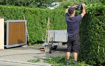 professional Hertfordshire hedge cutting services