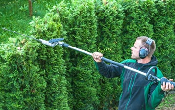 Hertfordshire hedge trimming costs