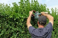 free Hertfordshire hedge trimming quotes